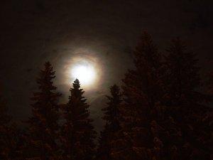 forste one night stand ilmajoki